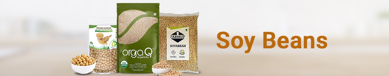 Soy Beans Price List in India