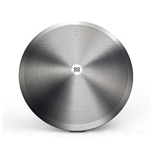 Buy Boomslang Shield 20W Bluetooth Speaker with 3D sound mode and Sub-woofer (Brushed Steel) Online