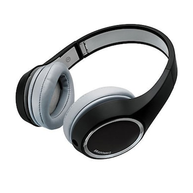 Brainwavz HM2 On The Ear Headphones with Detachable Cable and In-Line Remote and Microphone Black Price in India