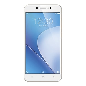Vivo Y66 Crown Gold, 32 GB