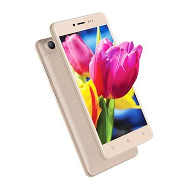 Ziox Astra Colors 4G VoLTE (Champagne, 1GB RAM, 8GB) Price in India
